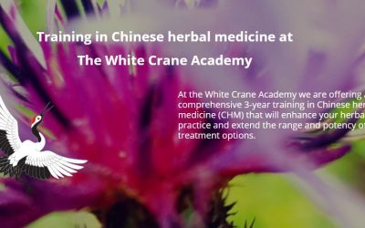 Optimise your practice with Chinese herbal medicine